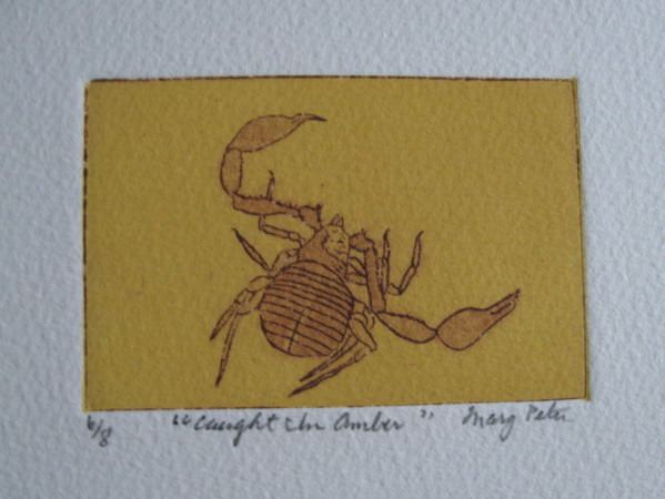 caught_in_amber__etching_on_paper__2x3