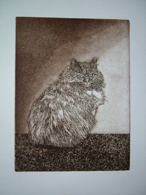 pensive-cat-9x12-etching