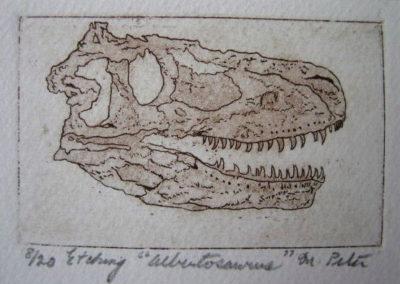 albertosaurus_etching_2x3_matted_8x10__35