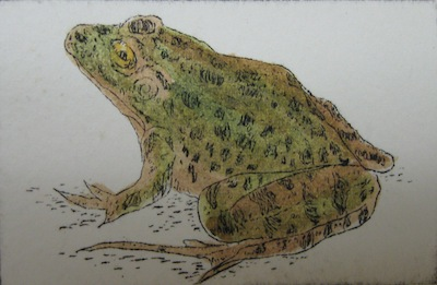 frog-v-etching-2x3