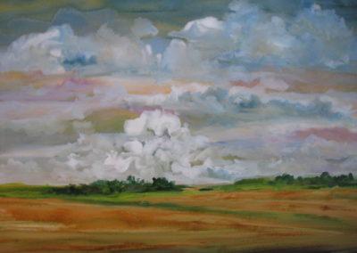 farmland-series-6-acrylic-on-paper-22x30