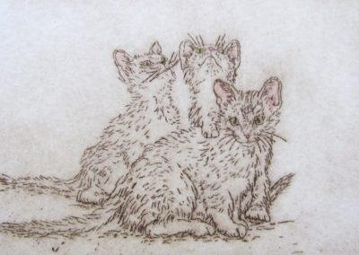 litter-mates-etching-3x5-plate