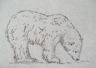 polar-bears-2-2x3-etching-on-paper