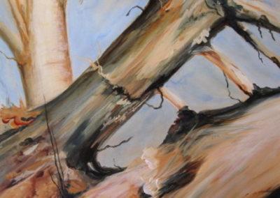tree_series__1_acrylic_on_canvas_24x24